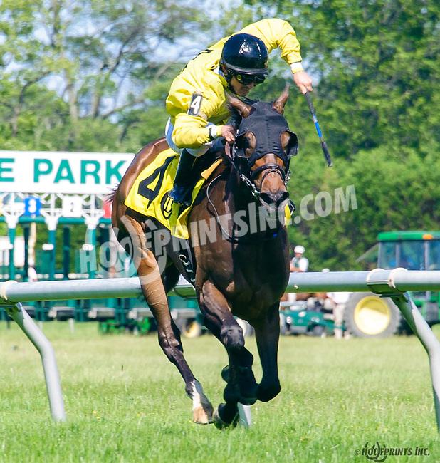 Janine Melnitz winning at Delaware Park on 6/9/16