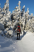 Appalachian Trail - Snowshoer on the Carter-Moriah Trail in winter conditions near Middle Carter Mountain  the White Mountains, New Hampshire USA