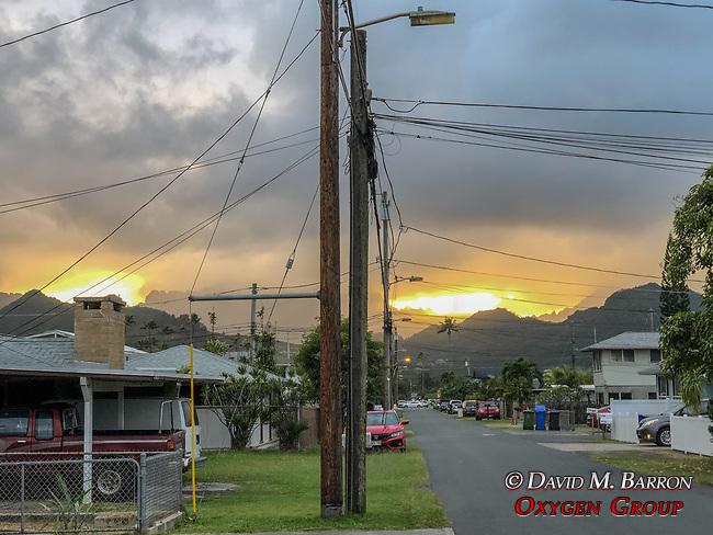 Kailua View