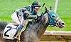 Thistle Deu winning at Delaware Park on 7/1/13<br /> bird vs horse