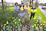 Bernie Horgan Carmel O'Connell, Marie Walsh and J D Cattigan launch Irish Cancer Society Daffodil Day  in Castleisland on Friday March 28th