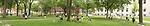 Harvard Yard panorama