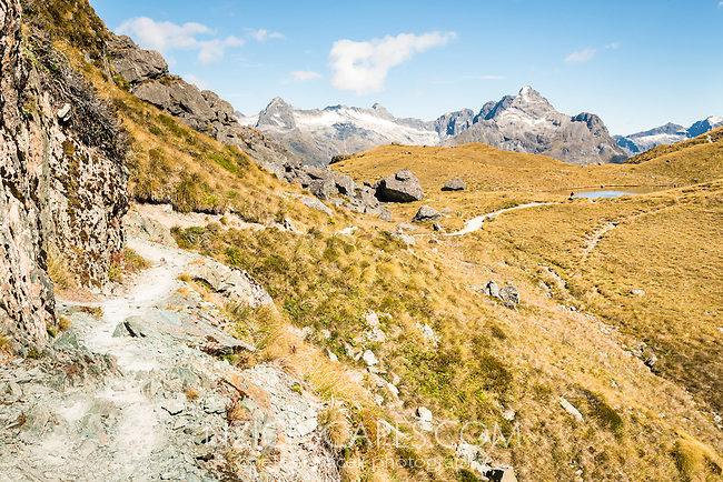 Routeburn Track at Harris Saddle with Darran Mountains of Fiordland in background, Mt. Aspiring National Park, UNESCO World Heritage Area, Central Otago, New Zealand, NZ