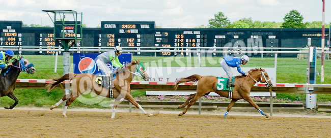 Onetoughtiger MHF winning at Delaware Park on 6/6/12