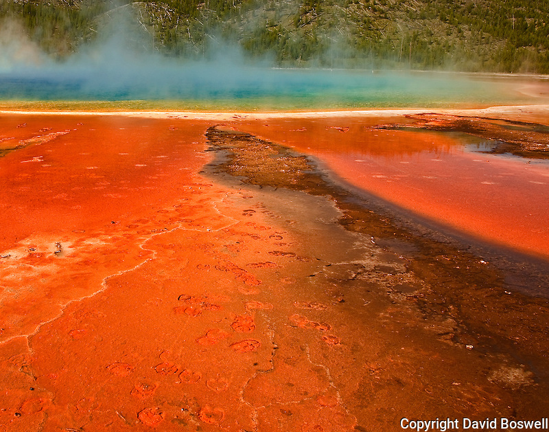 Bacterial Mats at Grand Prismatic Spring in the Midway Geyser Basin of Yellowstone National Park.