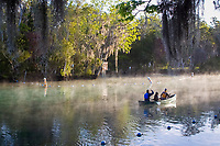 Canoers make an early morning excursion towards the warm waters of the Three Sisters Sanctuary to see manatees in their natural environment. Crystal River,Florida.