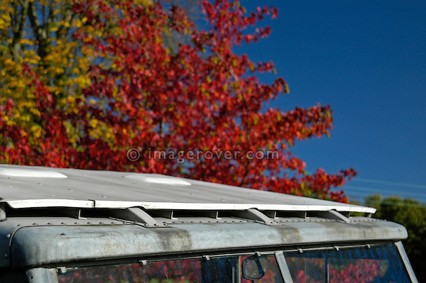 Double skinned Safari roof panel on a grey 1950's Land Rover Series One 86 inch Station Wagon. This Land Rover is in extremly original condition still with its original paint. Lovely autumn weather with beautiful coloured treas and blue sky. Dunsfold, UK, 2004. --- No releases available. Automotive trademarks are the property of the trademark holder, authorization may be needed for some uses.