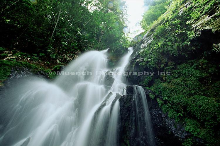 San Padrillo Waterfall Corcovado NP