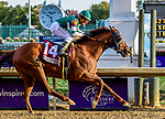 November 3, 2018: Accelerate #14, ridden by Joel Rosario, wins the Breeders' Cup Classic on Breeders' Cup World Championship Saturday at Churchill Downs on November 3, 2018 in Louisville, Kentucky. Jessica Morgan/Eclipse Sportswire/CSM
