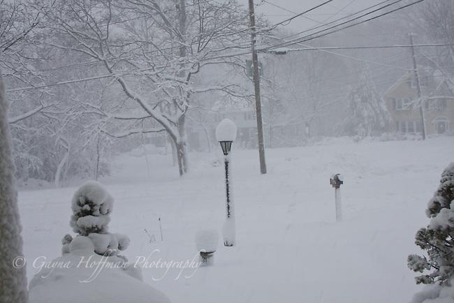 Snow storm scene in suburban neighborhood.