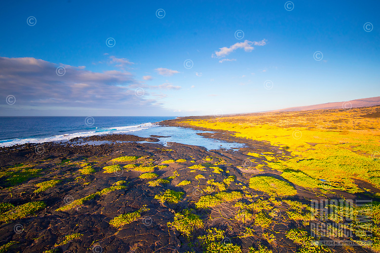 An aerial view of the southeastern shoreline of Hawai'i Island.