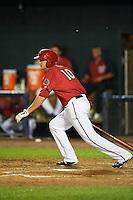 Harrisburg Senators first baseman Shawn Pleffner (10) at bat during a game against the New Hampshire Fisher Cats on July 21, 2015 at Metro Bank Park in Harrisburg, Pennsylvania.  New Hampshire defeated Harrisburg 7-1.  (Mike Janes/Four Seam Images)