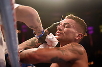 Lucien Reid with a cut above his right eye during a Boxing Show at the Royal Albert Hall on 8th March 2019