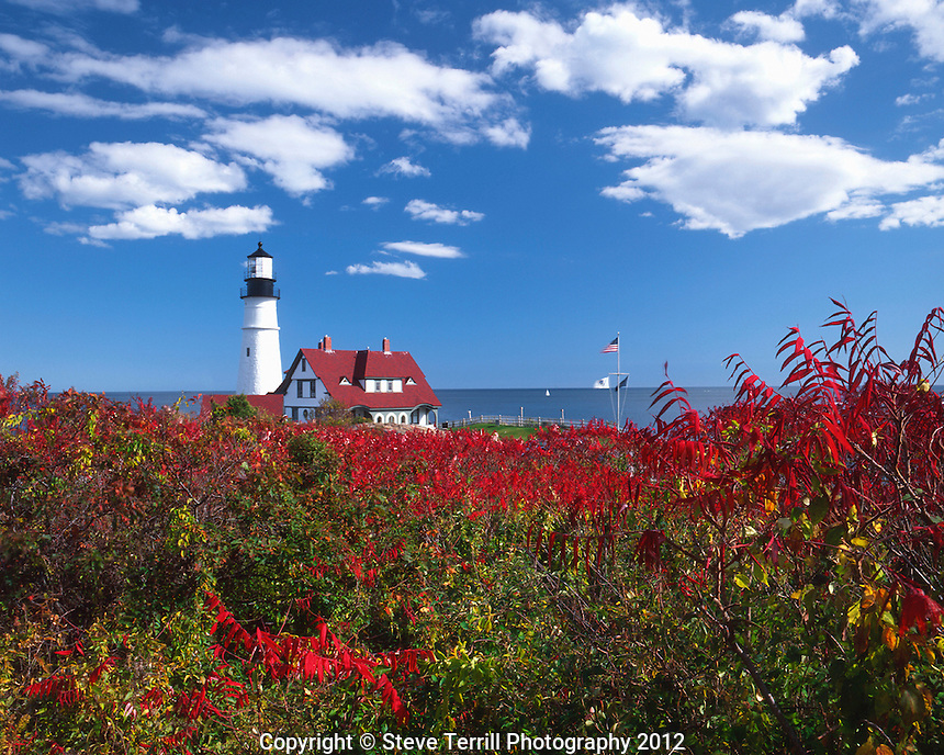 Autumn colored sumac and Portland Head Lighthouse at Fort Williams Park in Cape Elizabeth, Maine