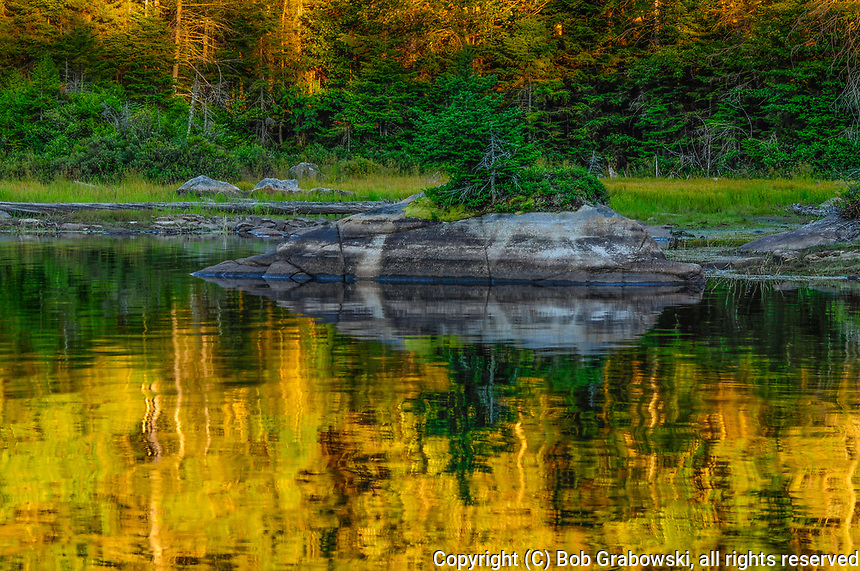 Cedar Lake, West Canada Lakes Wilderness Area, Adirondack Forest Preserve, New York