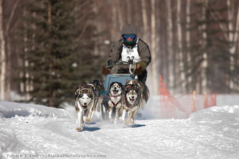 James Castro drives a 6 dog team in the 2009 Limited North American sprint sled dog race, Fairbanks, Alaska.