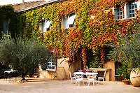 The main building covered with vine with olive trees, garden furniture. Chateau de Beaucastel, Domaines Perrin, Courthézon Courthezon Vaucluse France Europe