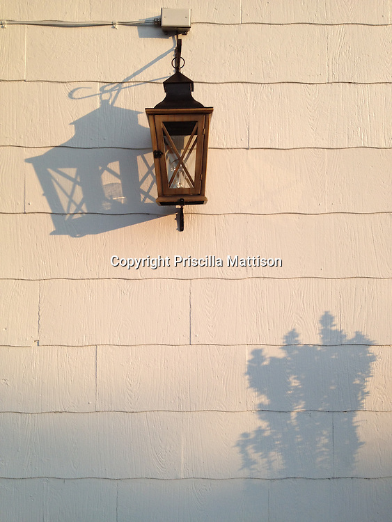 The shadows of a wrought-iron lantern and an unseen plant fall on the side of a building.