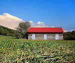 An Abandoned Brick Barn And Pastureland Photographed At Ground Level,.Southwestern Ohio; USA