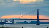 San Fransisco, Golden gate bridge