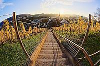 Sunset from stairs through vineyard, Munot Castle, Schaffhausen, Swizterland