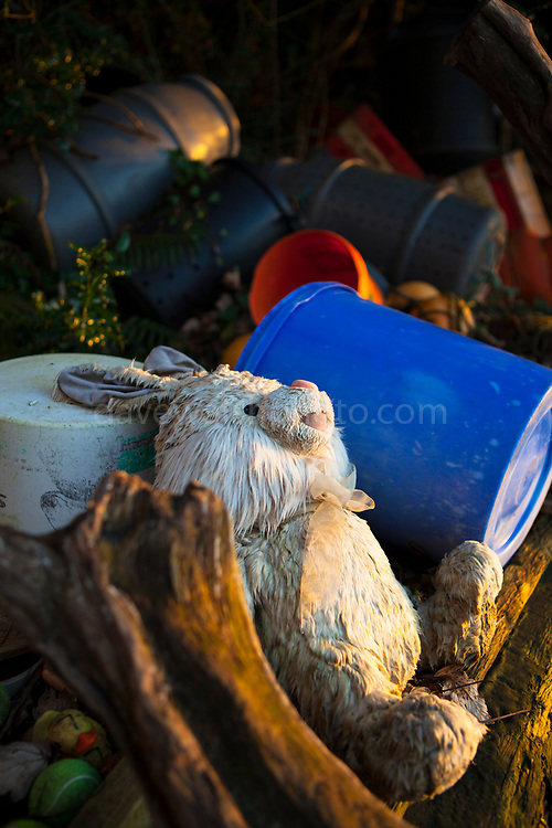 Abandoned toy rabbit washed up on beach
