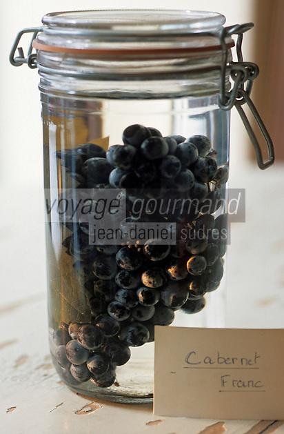 """Europe/France/Pays de la Loire/49/Maine-et-Loire/Angers: Bocal de raisin Cabernet Franc Cépage de l'Anjou Rouge au restaurant """"Le Relais"""""""