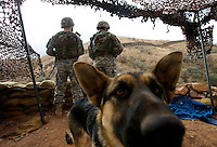 National Guard soldiers Spec. Louis Chraston, left, and Spec. Randy Carnright look south towards the Mexico border from an observation post outside Nogales as a stray dog hangs out in their camp. The soldiers work in shifts watching the border and calling the Border Patrol when they see smuggling activity. The dog wandered into camp one day and has become the camp mascot.