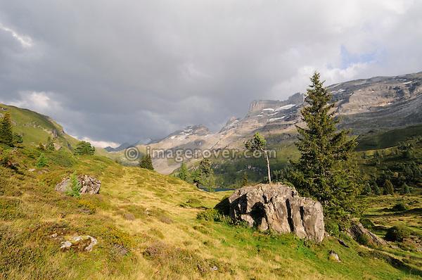 Switzerland, Western Europe, Bernese Oberland, Susten region nr. Innertkirchen / Gadmen. Engstlenalp.