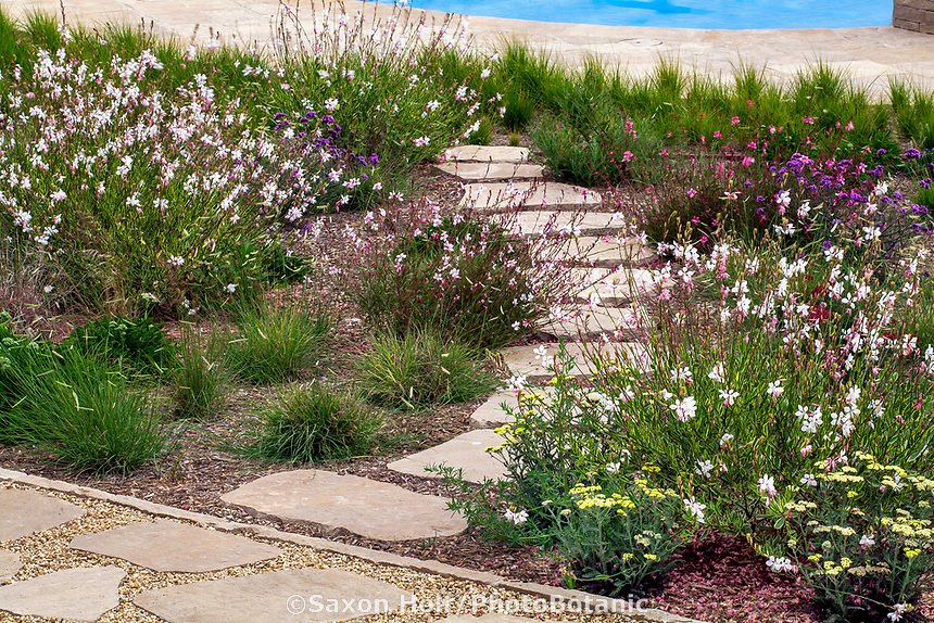 Stepping stone path over cistern water storage buried under California garden for water harvest; Urban Water Group design