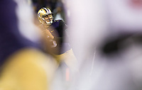 Jake Browning looks for receivers in traffic.