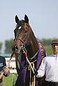 Horse Racing : Heian Stakes at Kyoto Racecourse