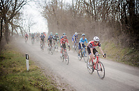 Toms SKUJIŅŠ (LVA/Trek-Segafredo)<br /> <br /> 13th Strade Bianche 2019 (1.UWT)<br /> One day race from Siena to Siena (184km)<br /> <br /> ©kramon