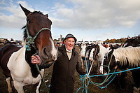 4/10/2010. Horse dealer Michael Dillon holds 6 horses at the Ballinasloe Horse Fair, Ballinasloe, County Galway, Ireland. Picture James Horan