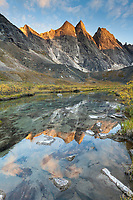 East and West Maiden and Camel peaks reflect in a mountain stream that drains out of the Arrigetch Peaks, Gates of the Arctic National Park, Alaska.