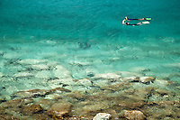 Snorkelers in Salt Pond Bay<br /> St. John<br /> Virgin Islands National Park
