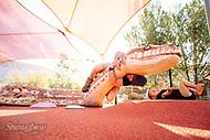 Image Ref: CA572<br /> Location: Desert Park, Alice Springs<br /> Date of Shot: 17.09.18