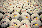 Large frozen tuna are lined up for auction at the world's largest fish and marine products market in Tsukiji, Tokyo