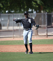 Ti'Quan Forbes - 2017 AIL White Sox (Bill Mitchell)