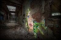 Painting by artist Fauna Graphic in abandoned building in Sheffield, South Yorkshire