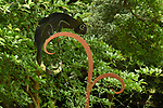 Pictured:  REVEAL:  The chameleon revealled as it reflects a dark tree trunk.<br /> <br /> A piece called Adapt, by Charles Bran, uses a reflective piece of metal to reflect items close to it so the chameleon becomes 'invisible' as it blends in with it's surroundings.<br /> <br /> Based on the reptile which would usually camouflage itself from predators the sculture is made from polished stainless steel, with the 'plant' it is sat on made of another metal called corten.<br /> <br /> The piece has been with Sir Harold Hillier Gardens, in Romsey, Hants, a little longer than planned after the recent lockdown restrictions meant it is still awaiting collection by the artist and so is spending a little longer for visitors to enjoy - if they spot it.<br /> <br /> The sculpture which has been in the arboretum for over a year is still being discovered for the first time by regular visitors to the gardens because of it blending in so well with it's enviroment.<br /> <br /> © Simon Czapp/Solent News & Photo Agency<br /> UK +44 (0) 2380 458800
