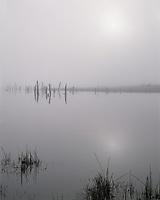 ORCAC_088 - USA, Oregon, Deschutes National Forest, Early morning sun breaks through fog over Crane Prairie Reservoir.