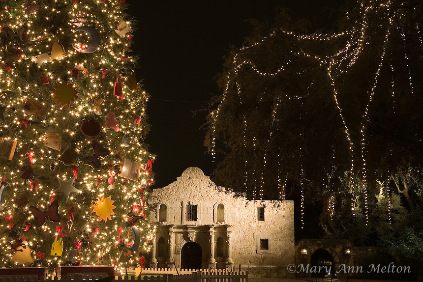 The San Antonio Christmas Tree in front of the Alamo