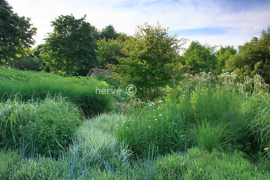 Jardins du pays d'Auge (mention obligatoire dans la légende ou le crédit photo):.autour du bassin massif dominé par les graminées.