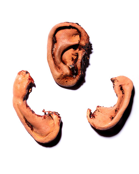 October 2, 2017. Wilmington, North Carolina.<br /> <br /> Latex Ears were the first ones made for the movie but not used. The lower pieces were designed to look as if they had been cut off with scissors.<br /> <br /> Jeff Goodwin created several sets of prosthetic ears for the 1986 David Lynch film Blue Velvet.