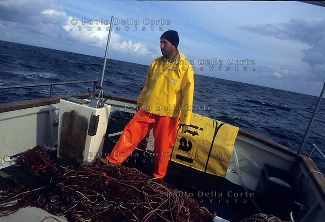 Stintino (Sassari) A pesca di aragoste a bordo di un peschereccio della cooperativa di Stintino.