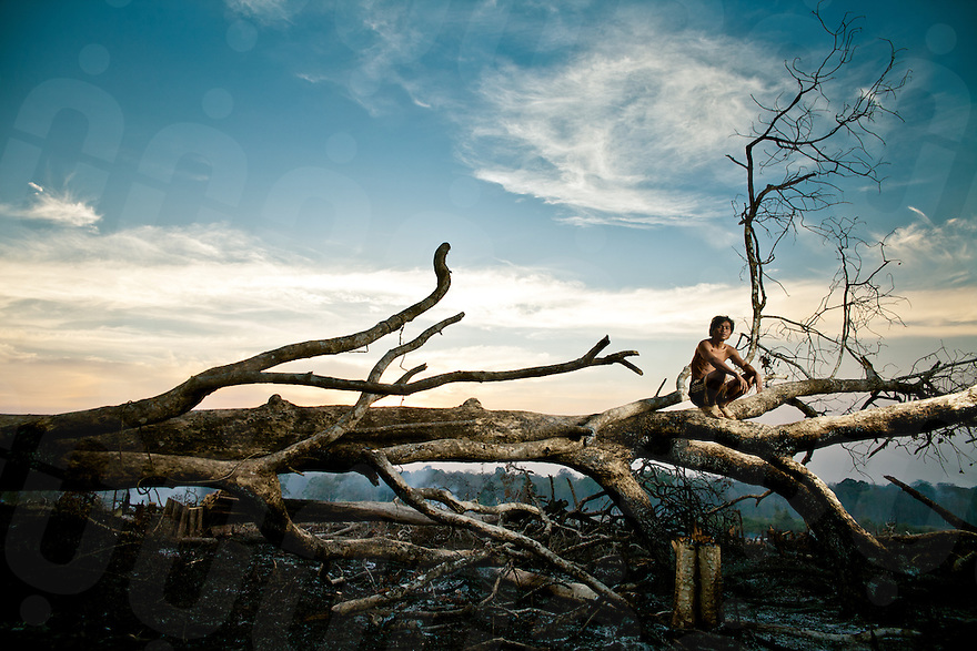 February 24, 2011 - Mondulkiri (Cambodia). A young Pnong sits over a burned tree in Pou Pring village. Indigenous people who live in this part of the country are among the most affected by logging, and the consequent loss of natural resources of which they are dependant upon. © Thomas Cristofoletti / Ruom