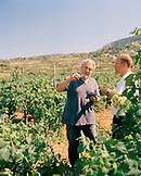 CROATIA, Hvar, Dalmatian Coast, Vintner Andro Tomic with his worker in his winery Bastijana on the island of Hvar. He makes Prosek.