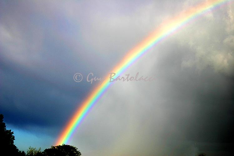 Rainbow at Home