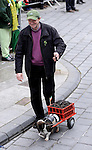 17-3-2014: Not a Kerry Bog Pony but a small hound pulls the turf with his owner Gerard Healy during the St. Patrick's Day Parade in Killarney County Kerry on Monday.<br /> Picture by Don MacMonagle